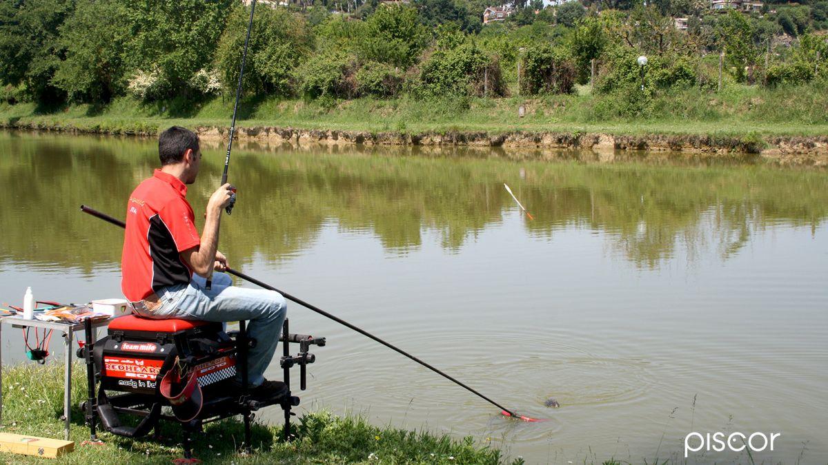 Pesca Inglese 4