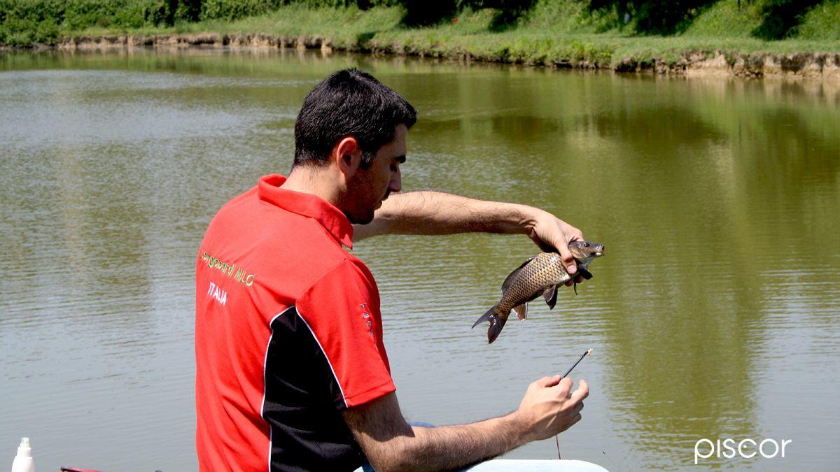 Pesca Inglese 5