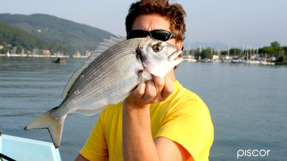 Pesca Orata 5
