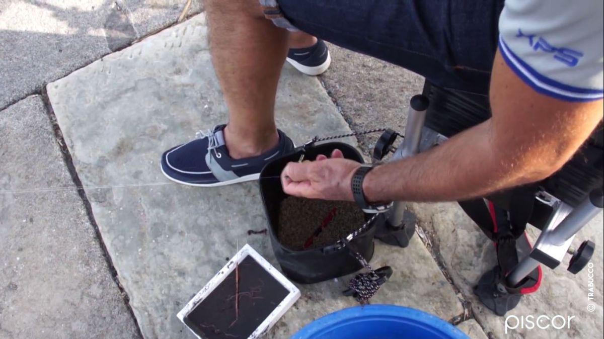 Pesca Orata