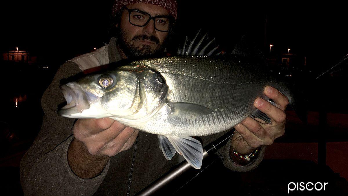 Pesca per Spigola 1