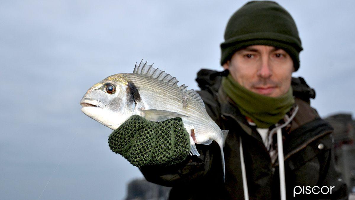 Pesca Riva- Orate 4