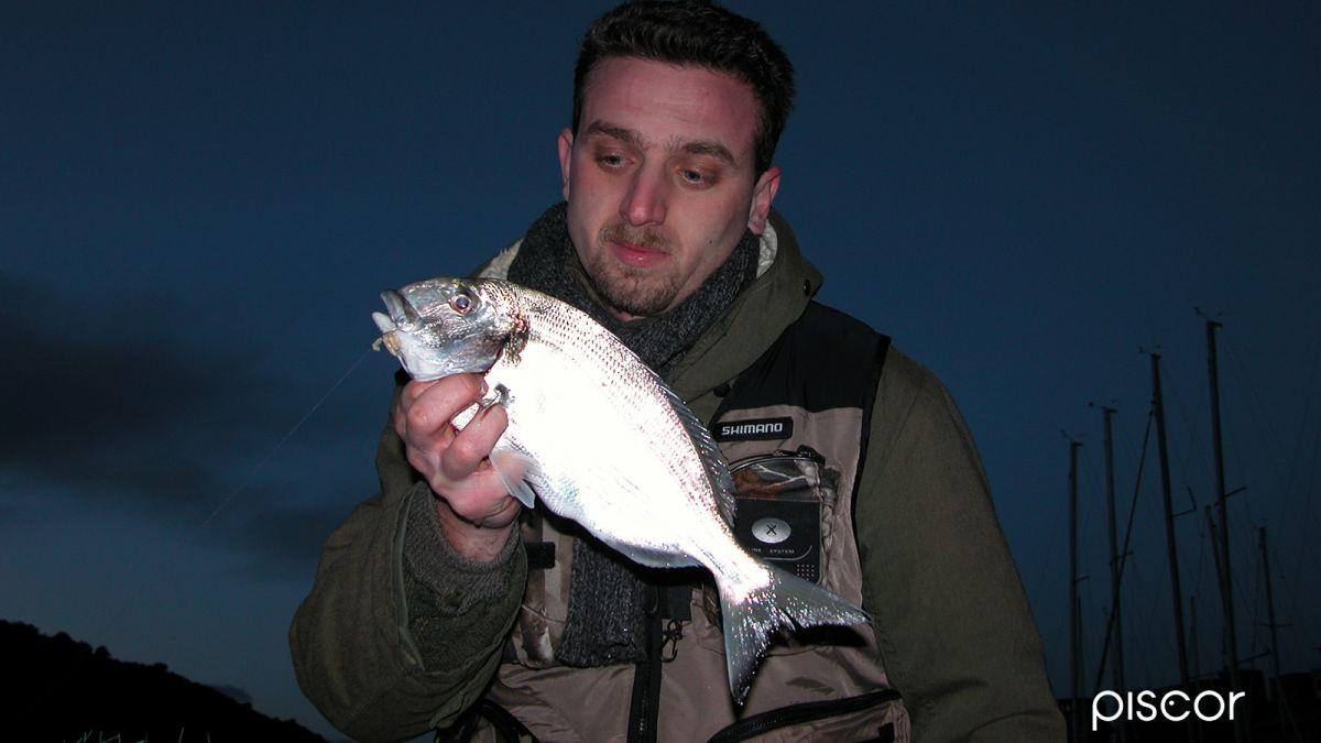 Pesca Riva- Orate 5
