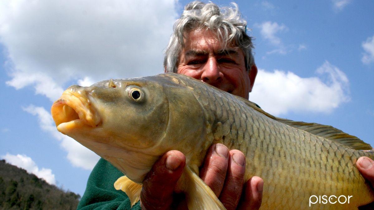 Pesca Roubasienne 0