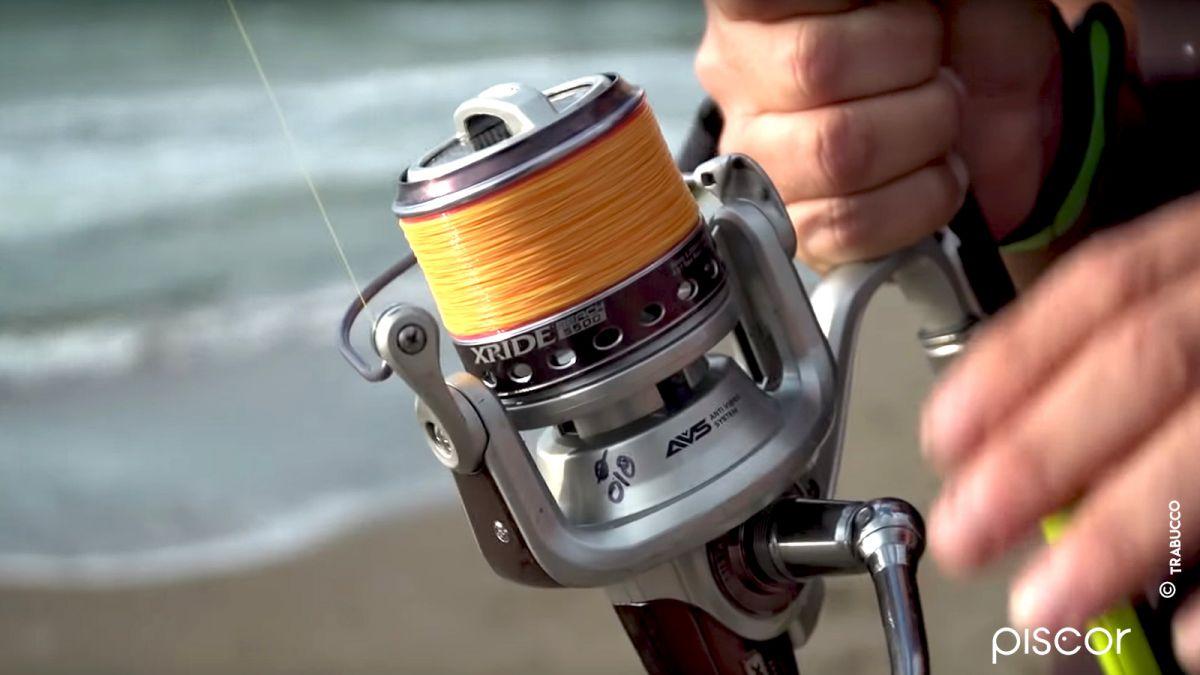 Pesca Spigola 0