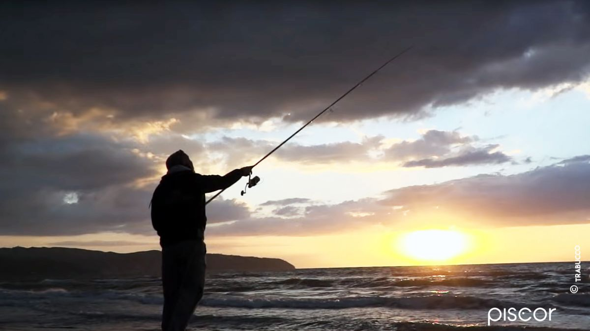 Pesca Spigola 10