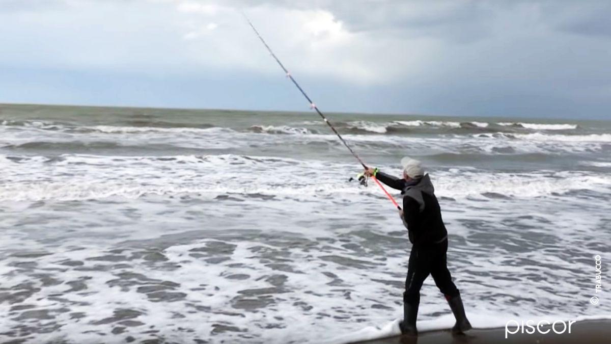 Pesca Spigola 7