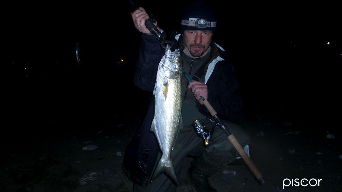 Pesce Serra a Spinning 1