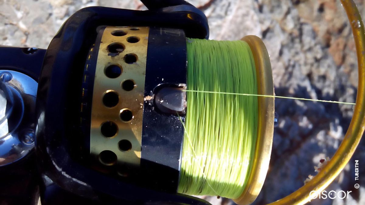 Rockfishing 5