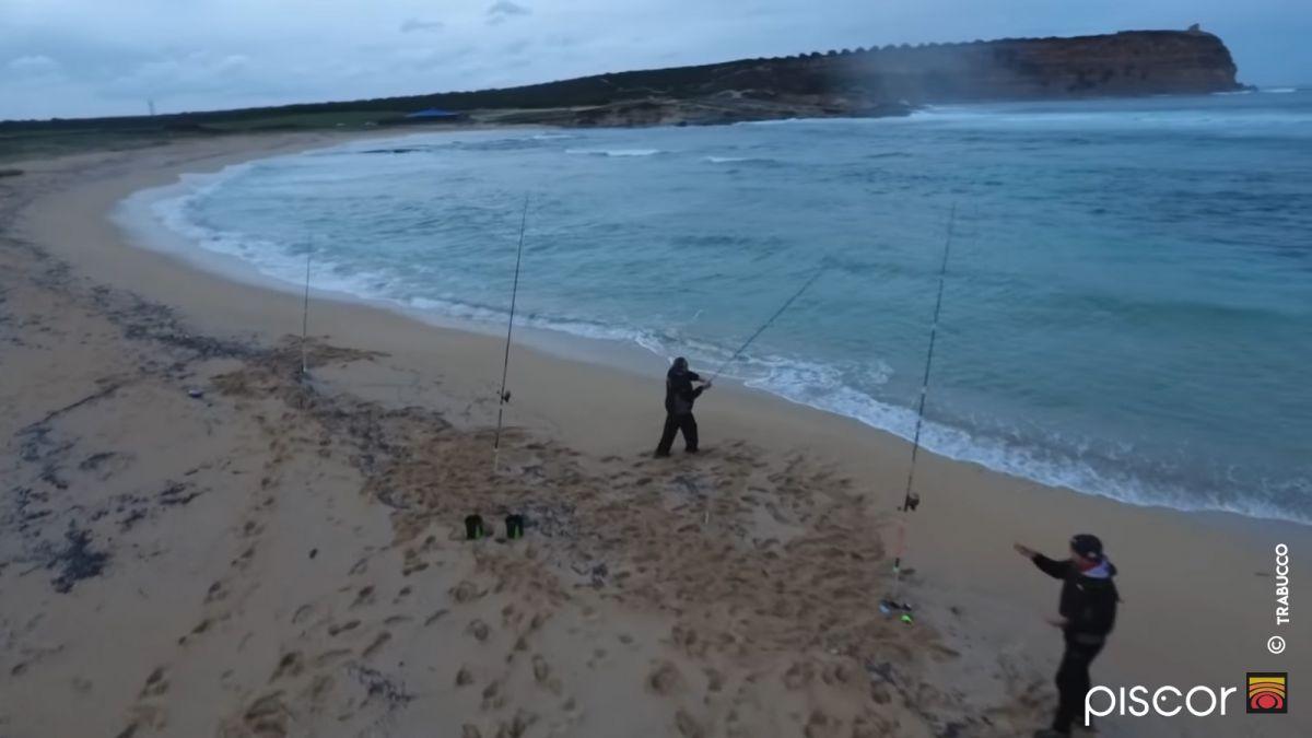 Sars et Oblades en Surfcasting 12