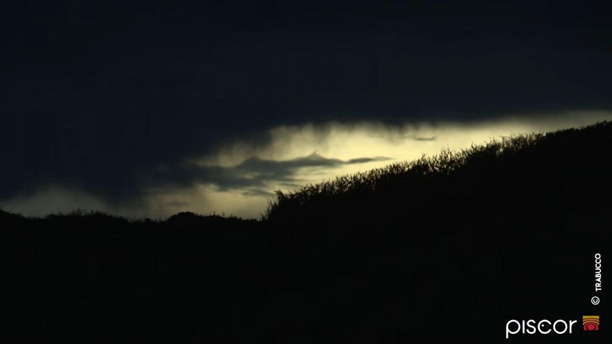Sars et Oblades en Surfcasting 6