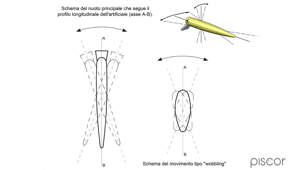 Spigola Spinning 3