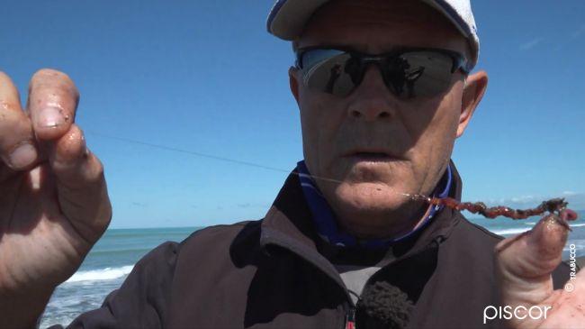 Surfcasting à Marée Descendante 5