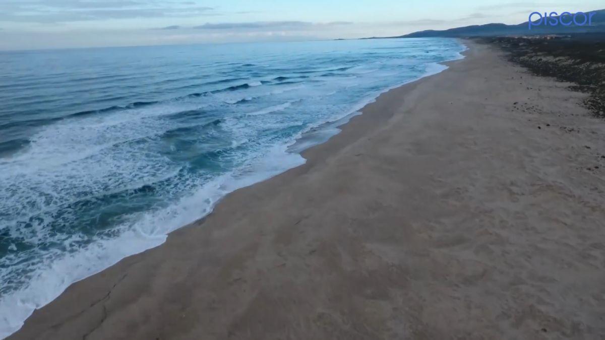 Surfcasting Orata Mare in Scaduta 3
