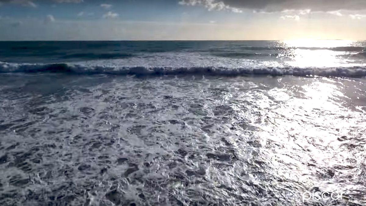 Surfcasting Spigola 5