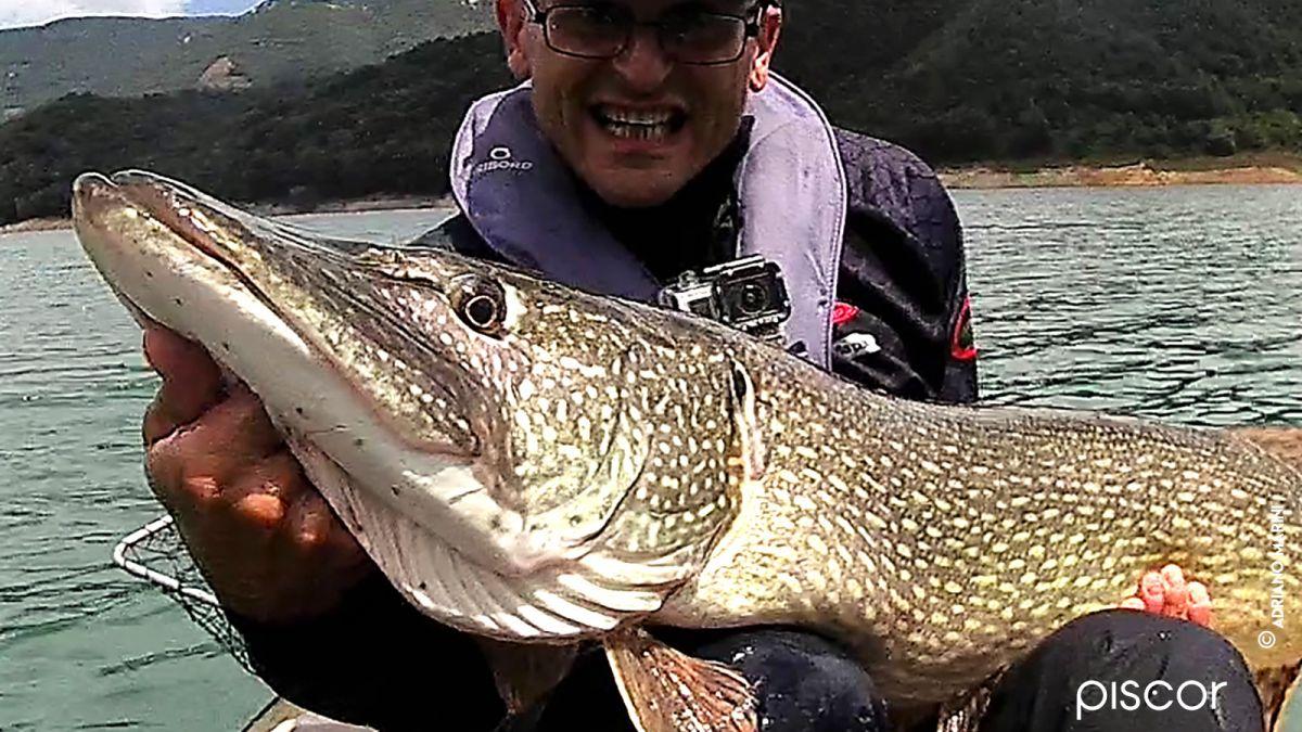 Tecniche di Pesca al Luccio 12