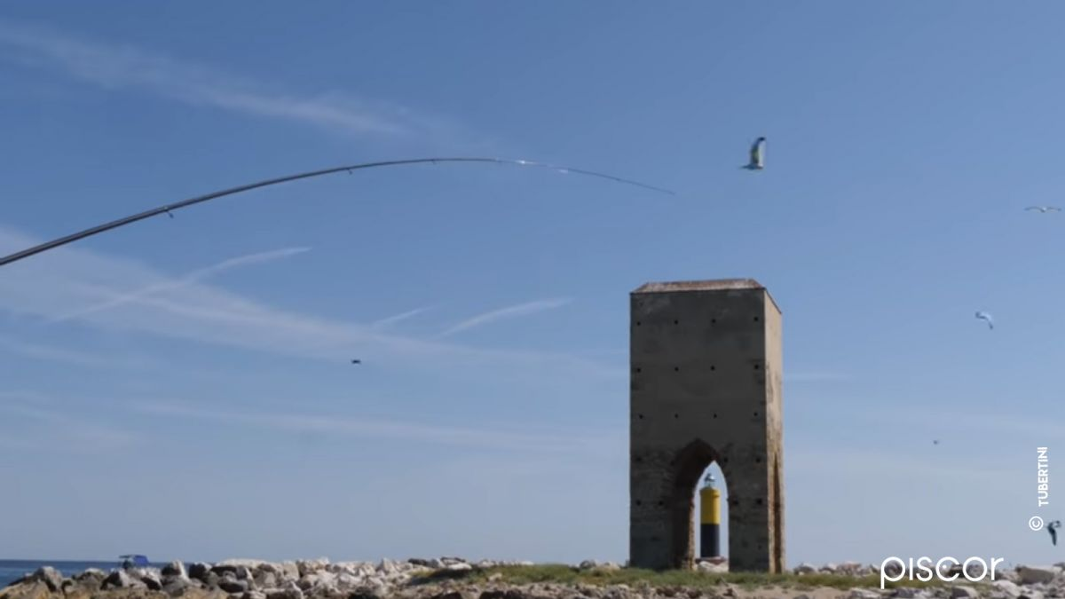 Pesca a Bolognese dalla Barca: Attrezzatura, Esche e Pasture