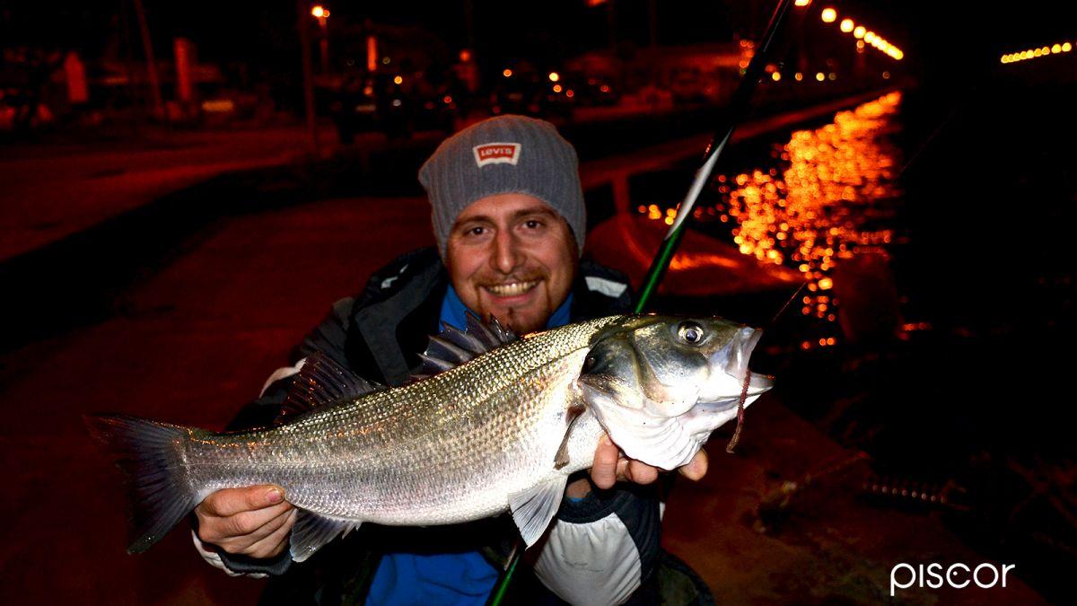 Urban Fishing 3
