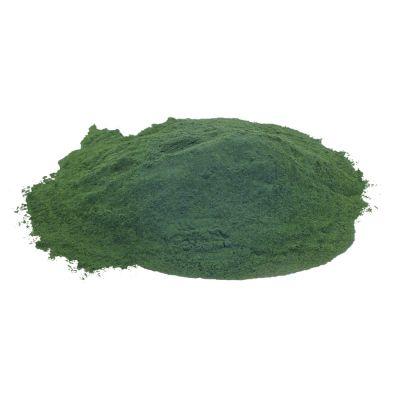 Reactor Baits Spiruline Weed