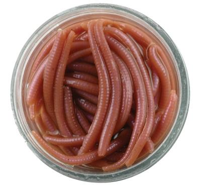 Berkley Gulp! Alive Angle worm